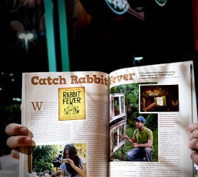 Featured story in Rabbits USA, available at Petco & Petsmart
